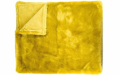Kuscheldecke Divanoo in gold